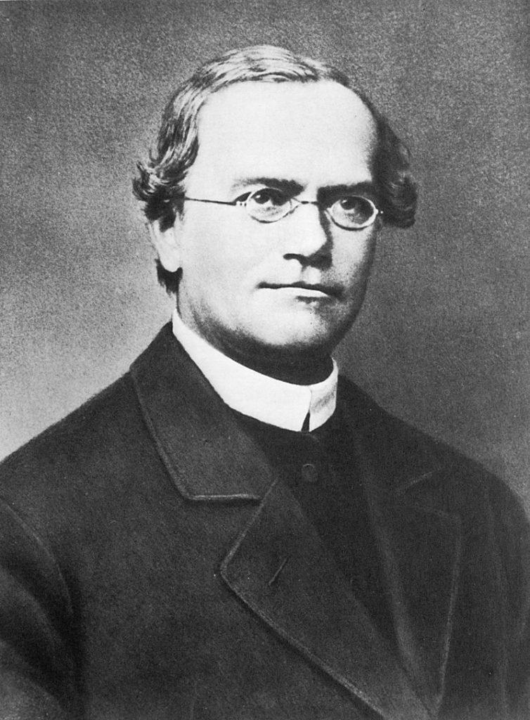 Gregor Johann Mendel (20 July 1822 – 6 January 1884)